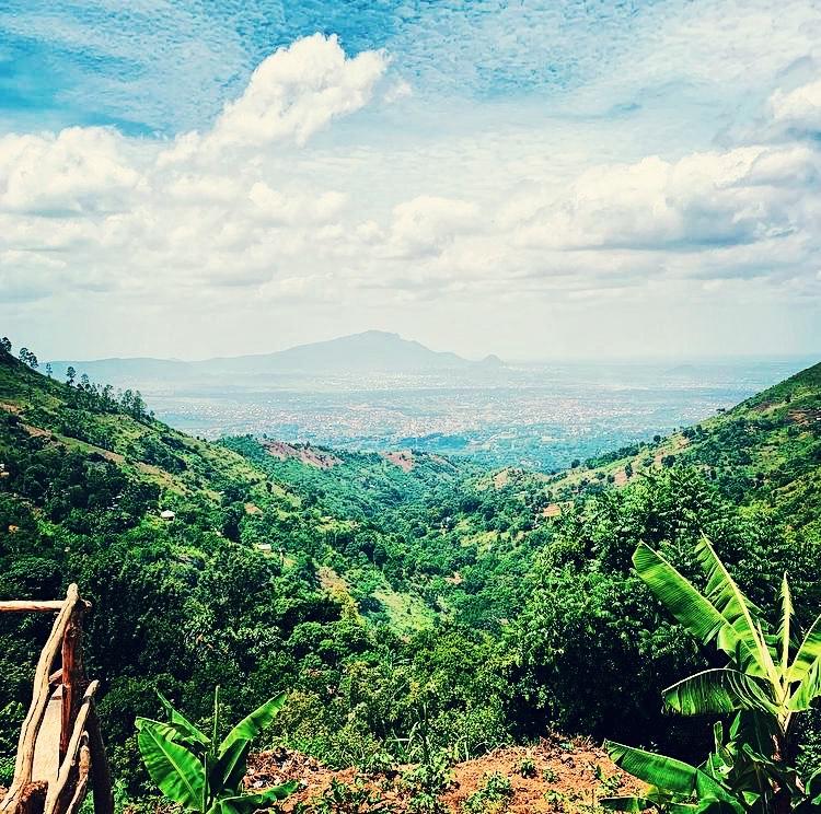Uluguru mountain range, Morogoro, Tanzania. Charlotte Gadd